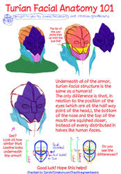 Turian Anatomy by Creativegreenbeans