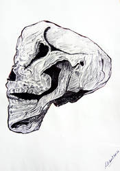 skull by ShantanuS