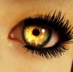 Eye and Eyelashes by ColorinSilence