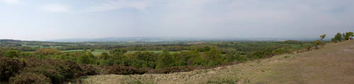 Panorama From Woodbury Common by drumcrazy779