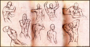 Male anatomy practice by SamanthaLi