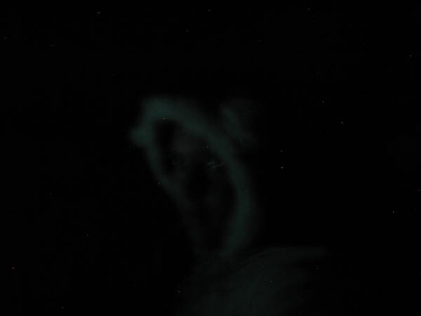 bluekiara12's Profile Picture