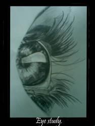 Eye study by babygirlsart