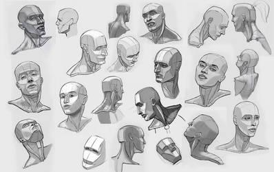 head studies by ndemers