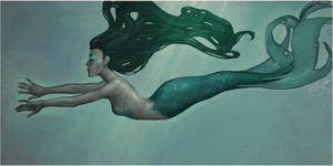 Aqua by Noology