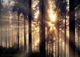 Sunshine of My Soul by StrixCZ