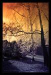 Pastel Dusk by StrixCZ