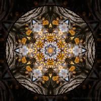 PhotoMandala 3 - Autumn Flashback by StrixCZ