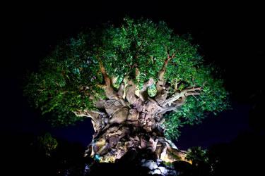 AK Tree of Life Night 24 by AreteStock