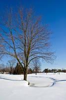 Winter Stock 22 by AreteStock