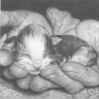First Born by Sabis
