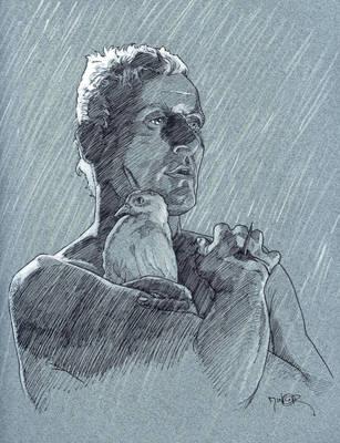 Tears in Rain by Jerantino