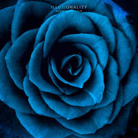 dead in the water by illusionality