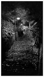 Night walk BW by Dr-Koesters