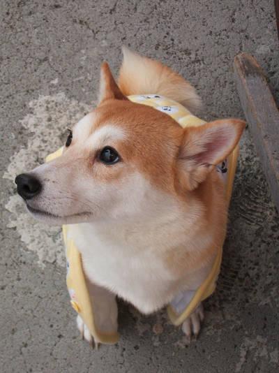mingrainbow's Profile Picture