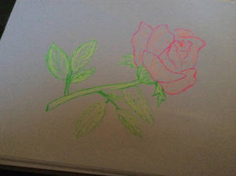 Rose Sketch by 2pMaddieWilliams
