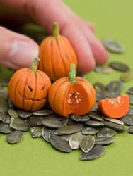 Miniature Pumpkins, Halloween Style by PetitPlat